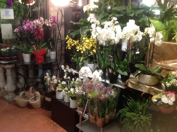 fleuriste nice eric fleurs. Black Bedroom Furniture Sets. Home Design Ideas